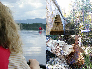 Day tours by canoe around Hovin i Telemark, Norway